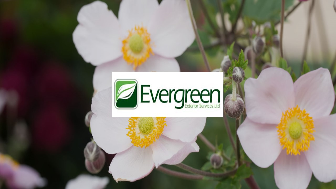 PODStar Project Win: Evergreen Exterior Services